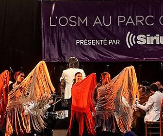 Flamenco Julie Perreault