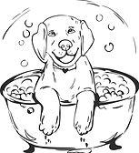 Bath link