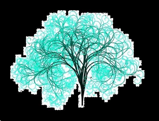 Бирюзовые организации, ОргРешение, Эволюционная цель, миссия, Анна Лавровская