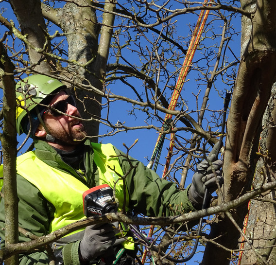 Rich Flight
