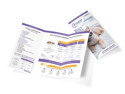 Trifold Brochure.png