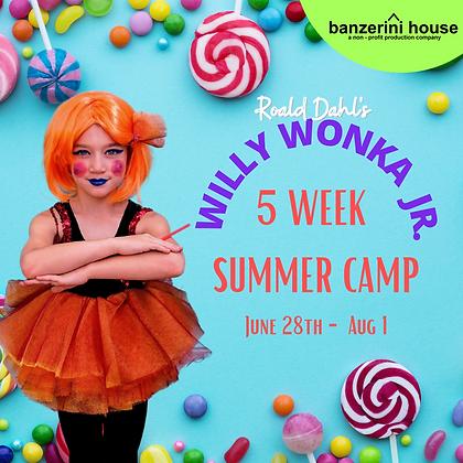 5 Week Summer Camp
