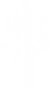 Teamsearch Logo-tree-05.png