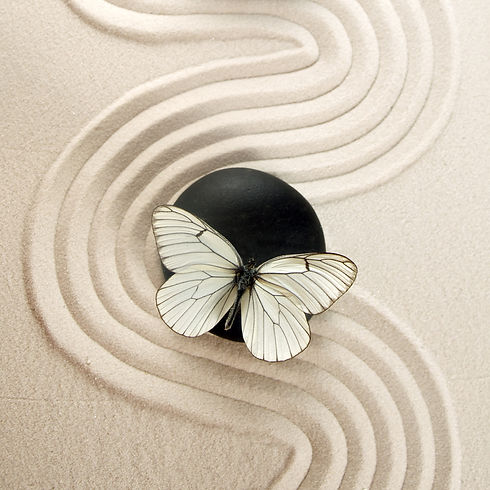 Zen stone  garden.jpg