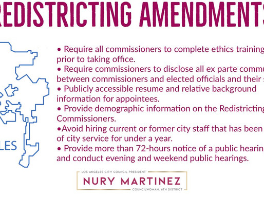 Ensuring Transparency and Fairness in the Redistricting Process