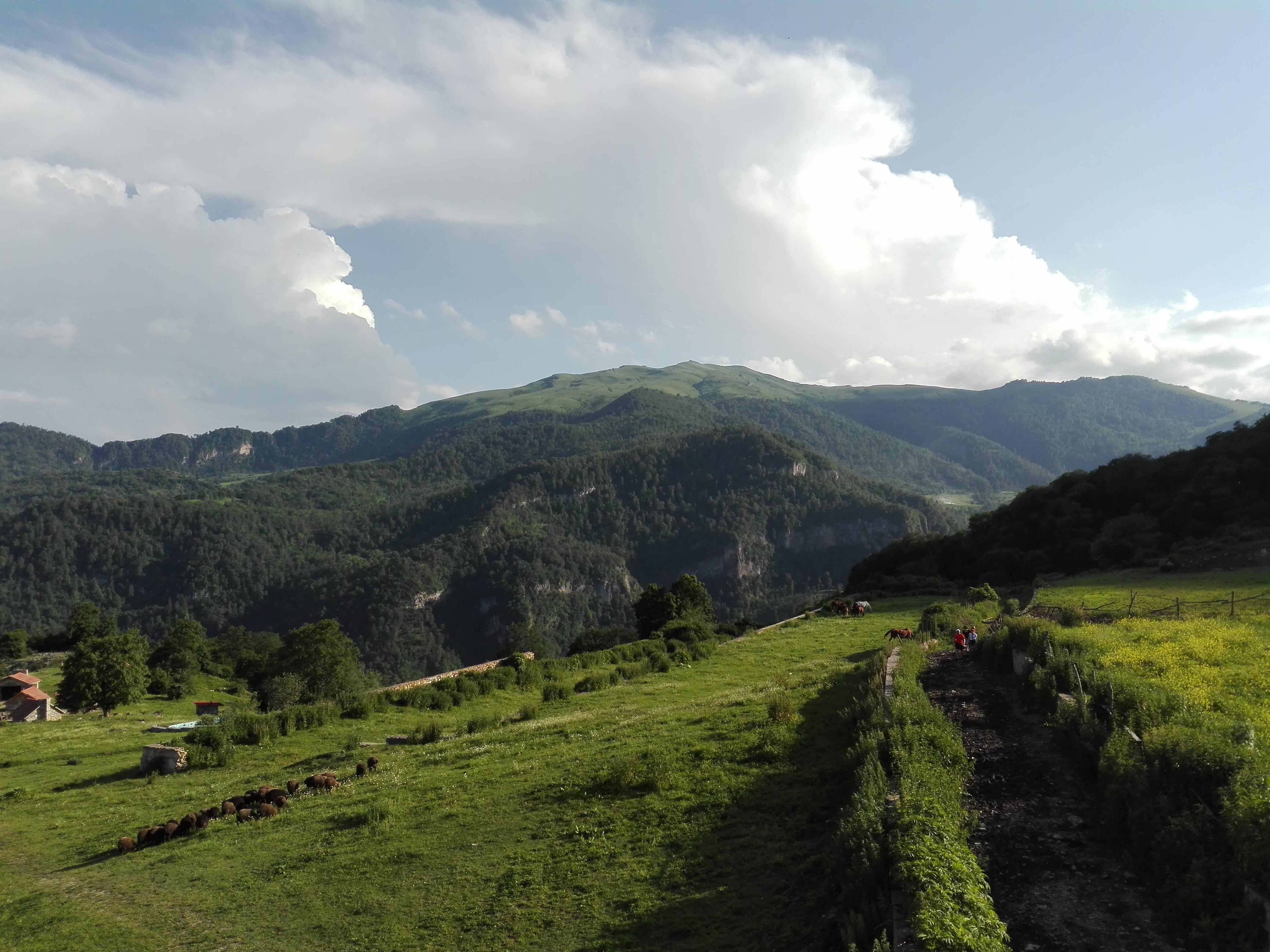 Село Енокаван