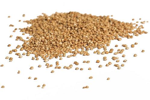 Quinoa British