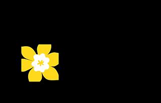 Societe canadienne du cancer logo