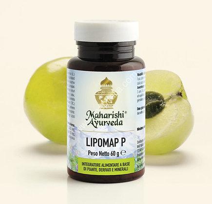 LIPOMAP P