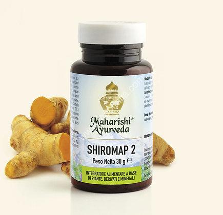 SHIROMAP 2