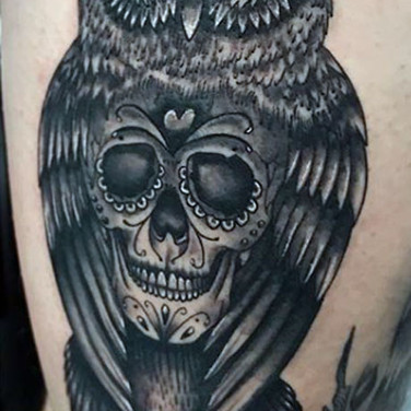 owly-9.jpg