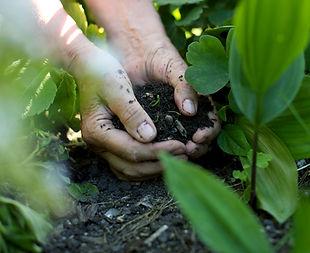 Die Hände in den Boden