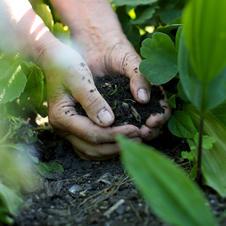 Soil Metrics