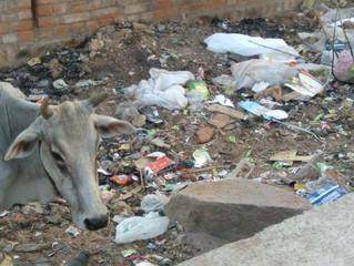En fattigdomsreduserende kamp mot plastsøppel?