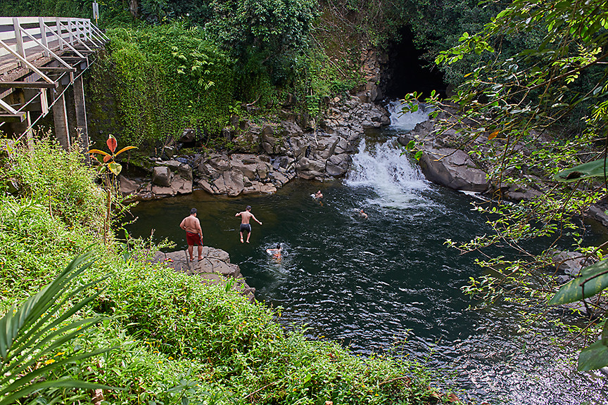 Hawaiian Jumpers 1