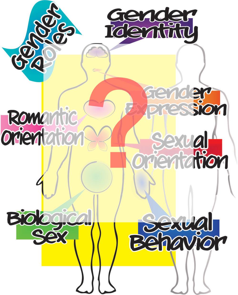 LGTBQ terms