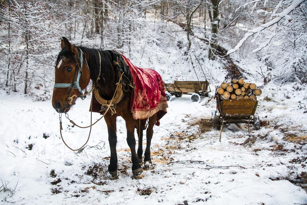 Macedonia Photo Tour