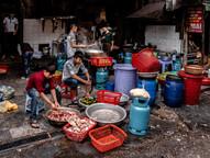 Tapshanov - Hanoi, Vietnam