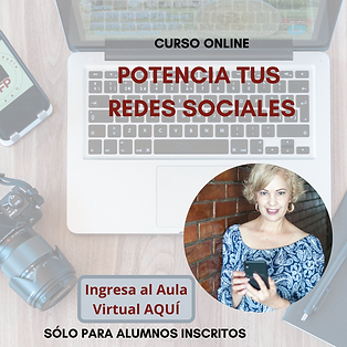 AULA VIRTUAL REDES SOCIALES.png