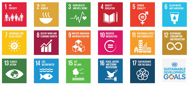 SDG-sustanable-development-goals.jpg