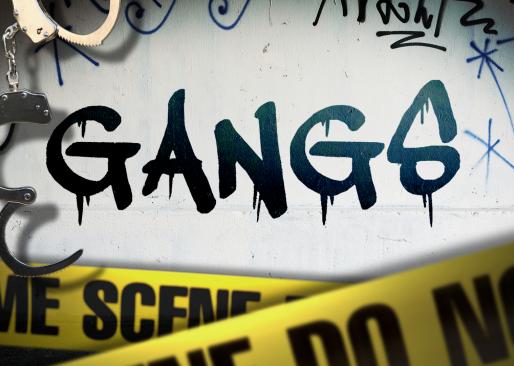 Saving Kids from Gangs