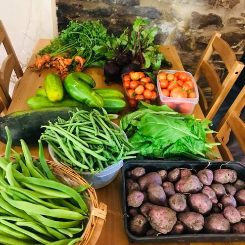 Our very own allotment grown produce! A donation we made to Infinity Initiatives C.I.C!