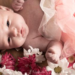 upload newborn photoshoot-061.jpg