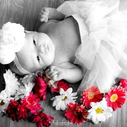 upload newborn photoshoot-051.jpg
