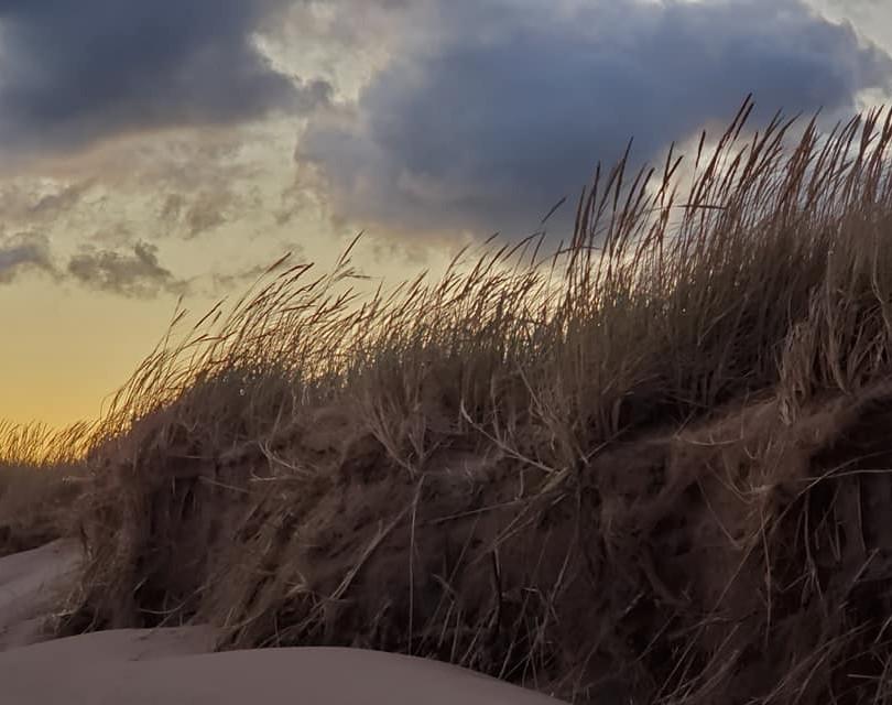 PEI Canada Dalvay Yoga Retreat The Dunes