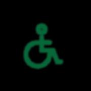 handicap-01.png