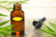 tea tree oil-min.png