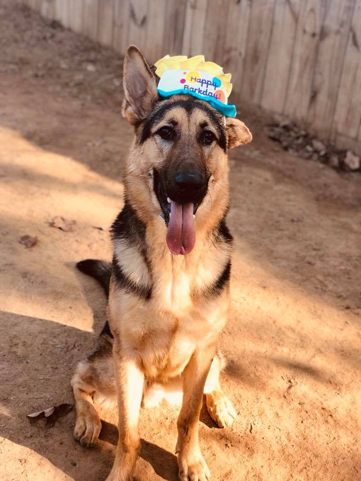birthday boy