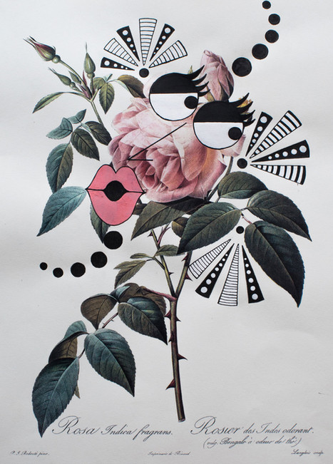 flowerfaces-5_baixa.jpg