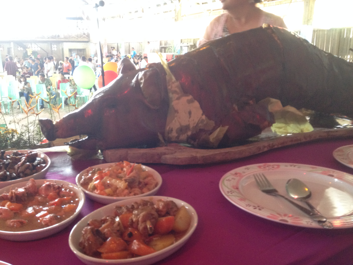 lechon (whole roasted pig)