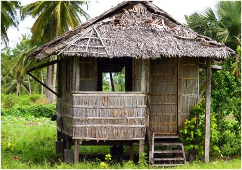 traditional palm hut