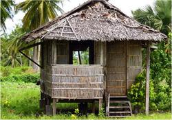 traditional palm hut