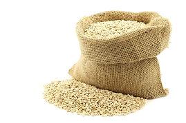 barley%20commodity%20agrilinkage_edited.