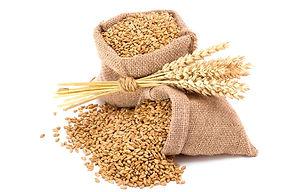wheat-bloating-tips_edited.jpg