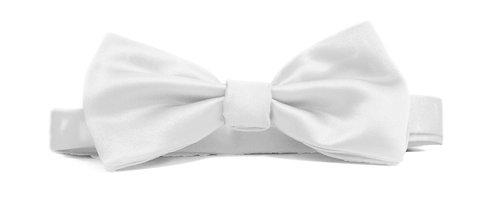 Fellini Italian Light Satin Dean Band bow tie