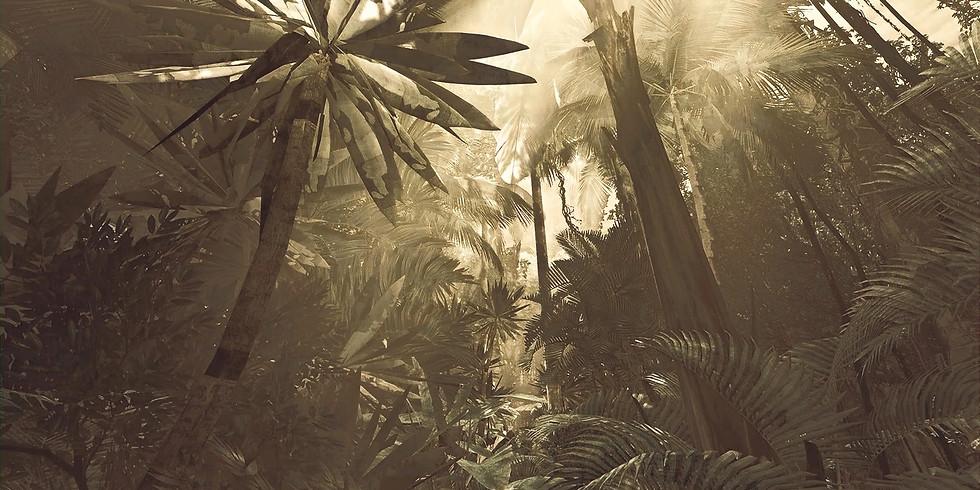 Inside Tumucumaque