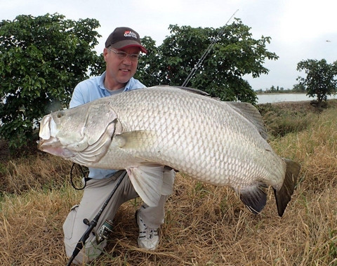 Barramundi fishing-thailand in Bangkok.