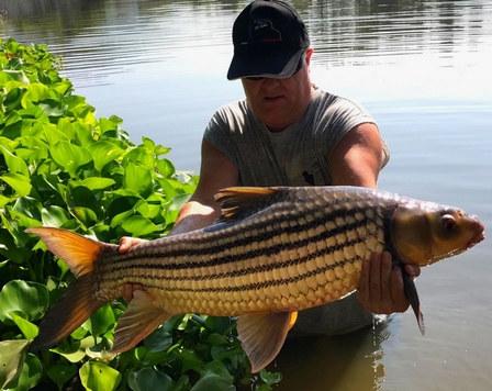 Julien's Golden Price Carp catch by Thailand-Fishing.