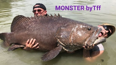 Thailand-Fishing with BIG Grouper.