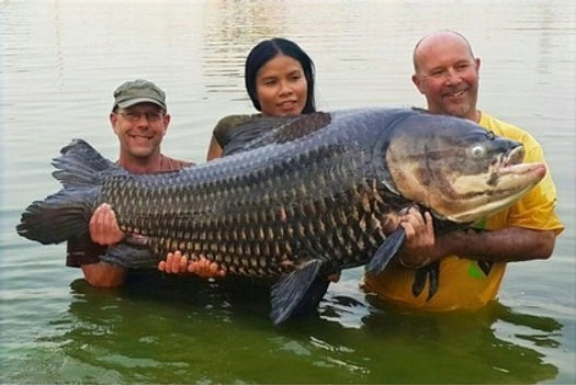 Catch the biggest fish in Thailand-Fishing.