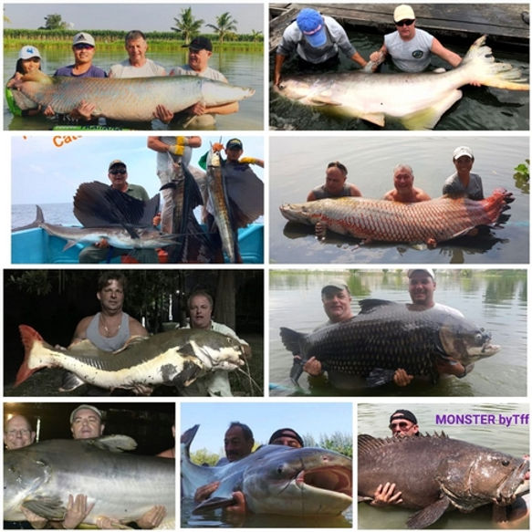 Thailand-Fishing Trips for the biggest Fish in Thailand,
