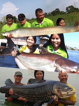 Catch BIG Fish Species with Thailand-Fishing.