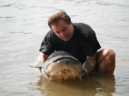 Wels Catfish / Silurus glanis / catch by Thailand-Fishing.