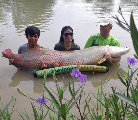 Pesca Arapaima