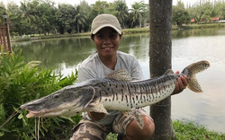 Pattaya Fishing Guide