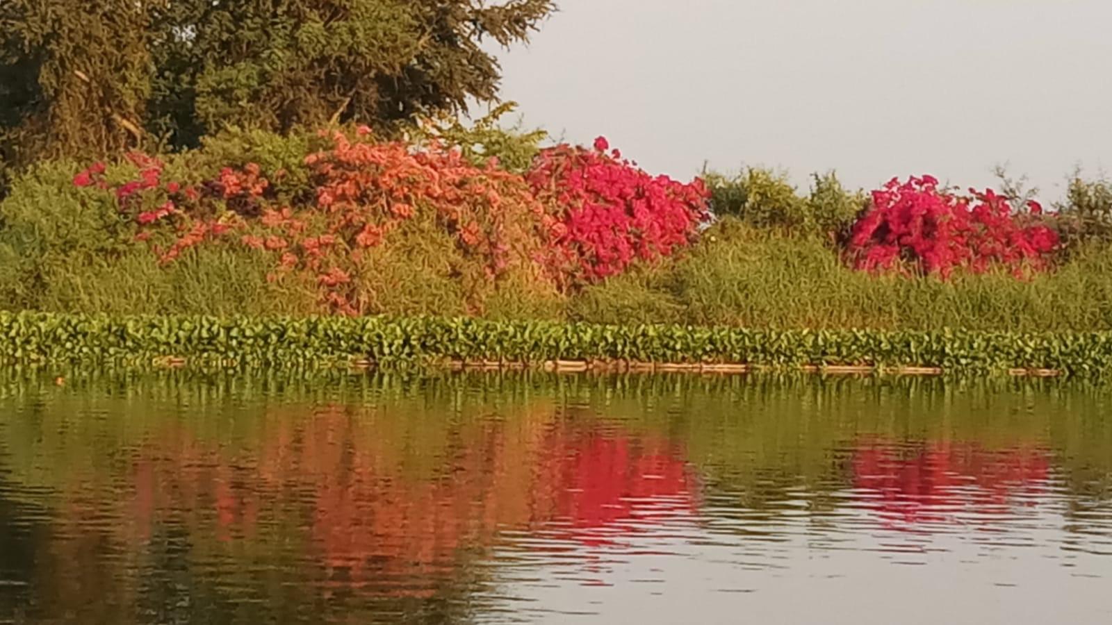 Beautifull Thailand fishing Lakes